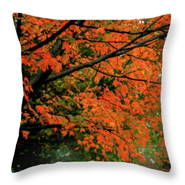Autumn At The Window Throw Pillow