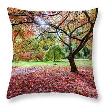 Autumn At Westonbirt Arboretum Throw Pillow