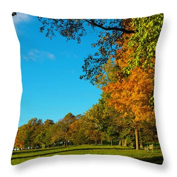 Autumn At World's End Throw Pillow