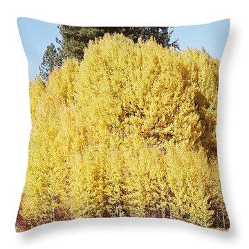 Autumn Awe.. Throw Pillow