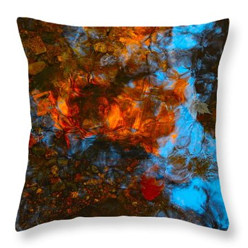 Autumn B 2015 35 Throw Pillow