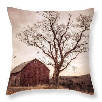 Throw Pillow featuring the photograph Autumn Barn And Tree by Gary Heller