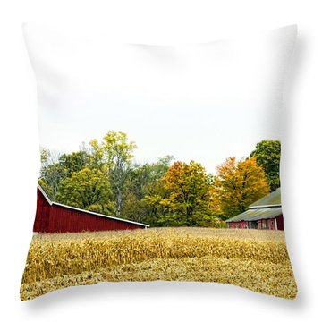 Autumn Barns Throw Pillow by Pat Cook