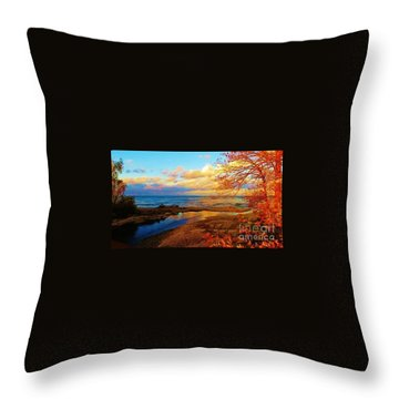 Autumn Beauty Lake Ontario Ny Throw Pillow