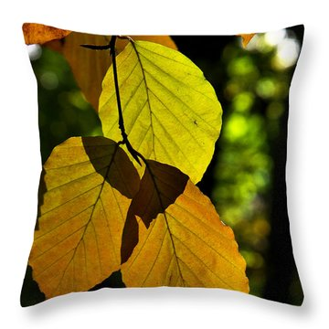 Autumn Beech Tree Leaves Throw Pillow