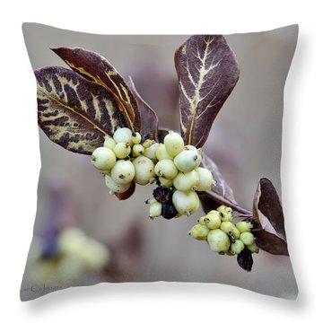 Autumn Berries And Foliage Throw Pillow