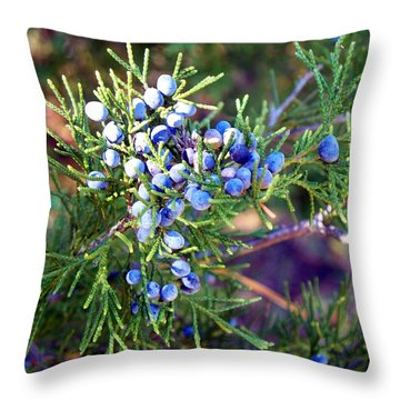 Throw Pillow featuring the photograph Autumn Berries by Betty Northcutt