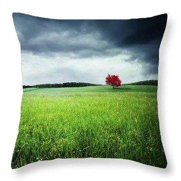Throw Pillow featuring the photograph Autumn by Bess Hamiti