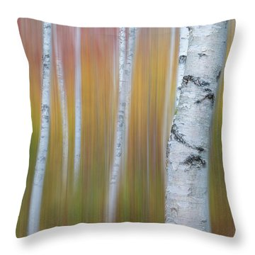 Autumn Birch Impressions Throw Pillow