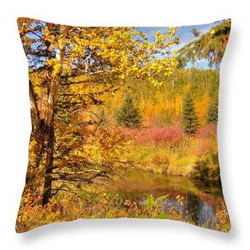 Throw Pillow featuring the photograph Autumn Birch Tree by Jim Sauchyn