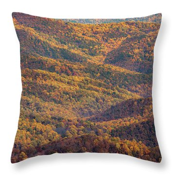 Autumn Blanket Throw Pillow