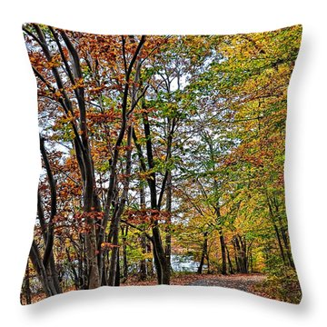 Throw Pillow featuring the photograph Autumn Bliss by Gina Savage