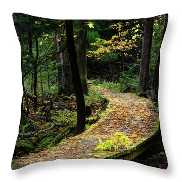 Autumn Boardwalk Throw Pillow