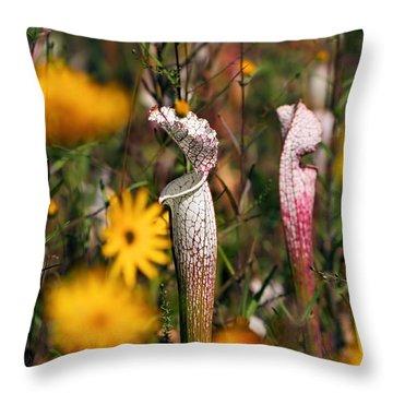 Autumn Bog  Throw Pillow by Katherine White