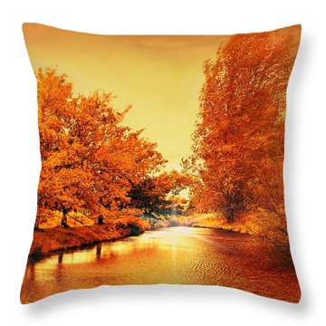 Autumn Breeze Throw Pillow by Wallaroo Images