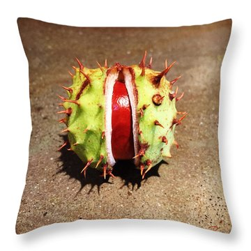 Autumn Burnish Throw Pillow