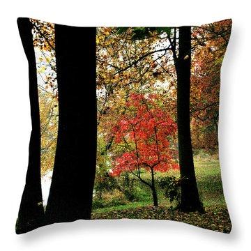 Autumn By The Lake Throw Pillow