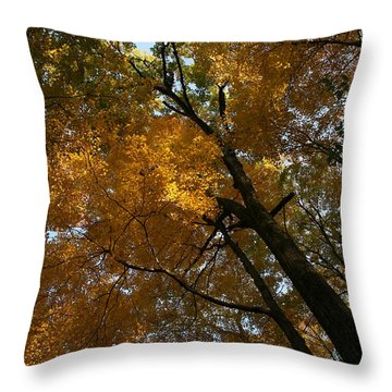 Throw Pillow featuring the photograph Autumn Canopy by Shari Jardina