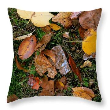 Autumn Carpet 001 Throw Pillow