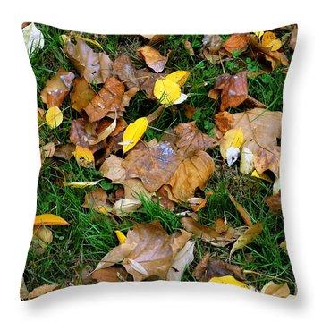 Autumn Carpet 002 Throw Pillow