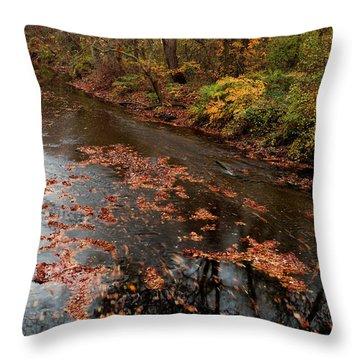 Autumn Carpet 003 Throw Pillow
