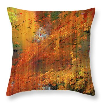 Throw Pillow featuring the photograph Autumn Cascade by Jessica Jenney