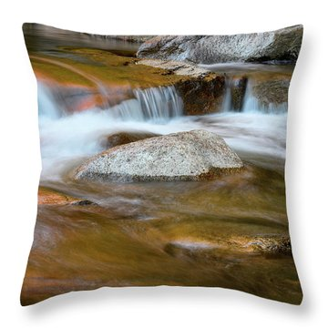 Throw Pillow featuring the photograph Autumn Cascade Nh by Michael Hubley