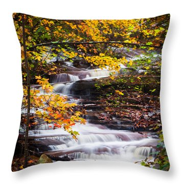 Autumn Cascade  Throw Pillow by Parker Cunningham