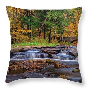Autumn Cascades Throw Pillow