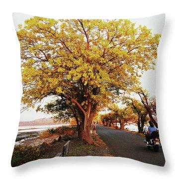Autumn Causeway Throw Pillow