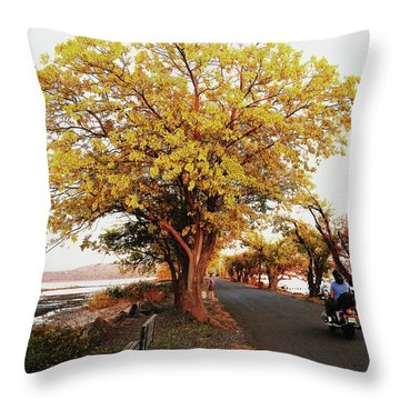 Autumn Causeway Throw Pillow
