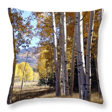 Autumn Chama New Mexico Throw Pillow by Kurt Van Wagner
