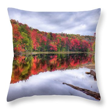 Throw Pillow featuring the photograph Autumn Color At The Pond by David Patterson