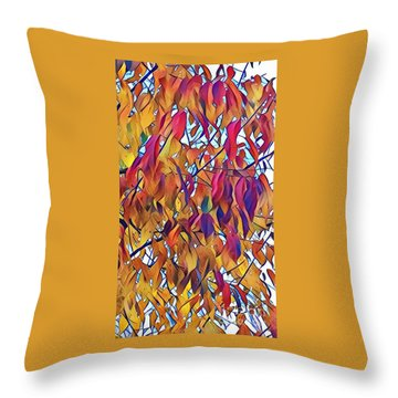 Throw Pillow featuring the photograph Autumn Color by Diane Miller