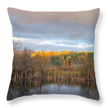 Autumn Color Gray Sky  Throw Pillow