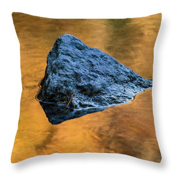 Throw Pillow featuring the photograph Autumn Color On Little River - D009990 by Daniel Dempster