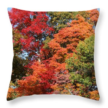 Throw Pillow featuring the photograph Autumn Color Spray by William Selander