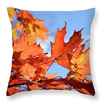 Throw Pillow featuring the photograph Autumn Colors 2 by Angie Tirado