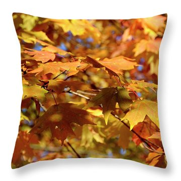 Throw Pillow featuring the photograph Autumn Colors 3  by Angie Tirado