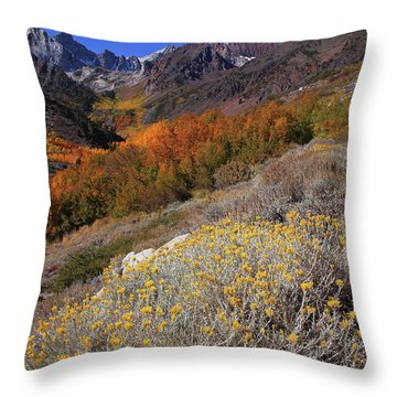 Autumn Colors At Mcgee Creek Canyon In The Eastern Sierras Throw Pillow