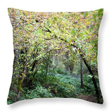 Autumn Colors In The Forest Throw Pillow