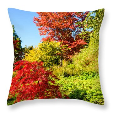 Throw Pillow featuring the photograph Autumn Colours by Colin Rayner