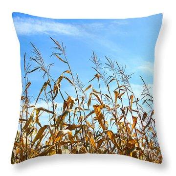 Autumn Corn Throw Pillow by Sandra Cunningham