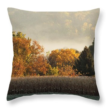 Autumn Cornfield Throw Pillow by Inspired Arts