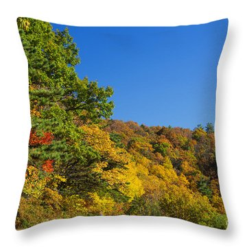 Autumn Country Roads Blue Ridge Parkway Throw Pillow