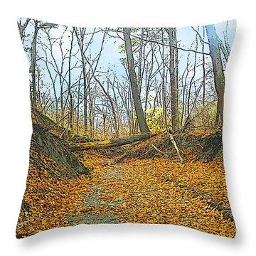 Autumn Creekbed Throw Pillow