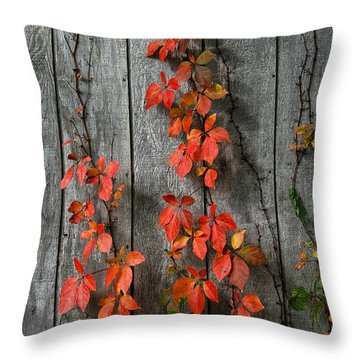 Autumn Creepers Throw Pillow