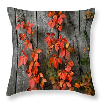 Throw Pillow featuring the photograph Autumn Creepers by William Selander