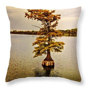 Autumn Cypress Throw Pillow by Scott Pellegrin