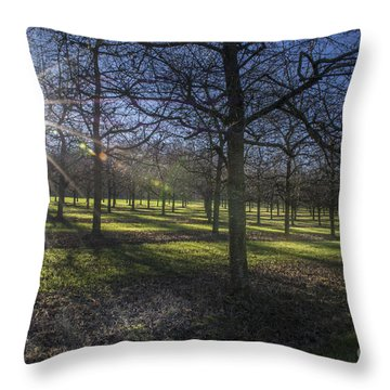 Autumn Day Throw Pillow by Bruno Santoro